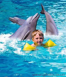 Дельфинотерапия, Аутизм Дельфинотерапия, Дельфин терапиясы